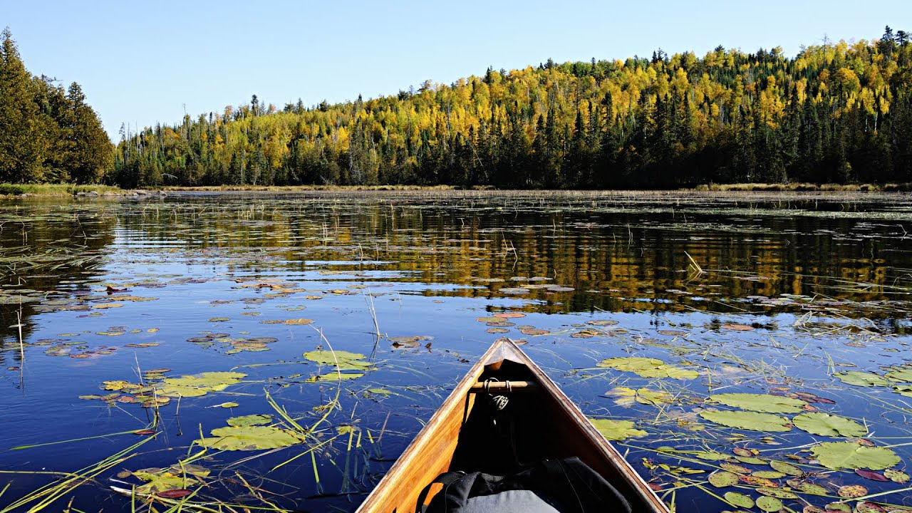Free Live Fall Wallpaper Fall 2014 Boundary Waters Bwca Trip Part 1 Baker