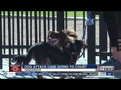 Dog attack case going to court