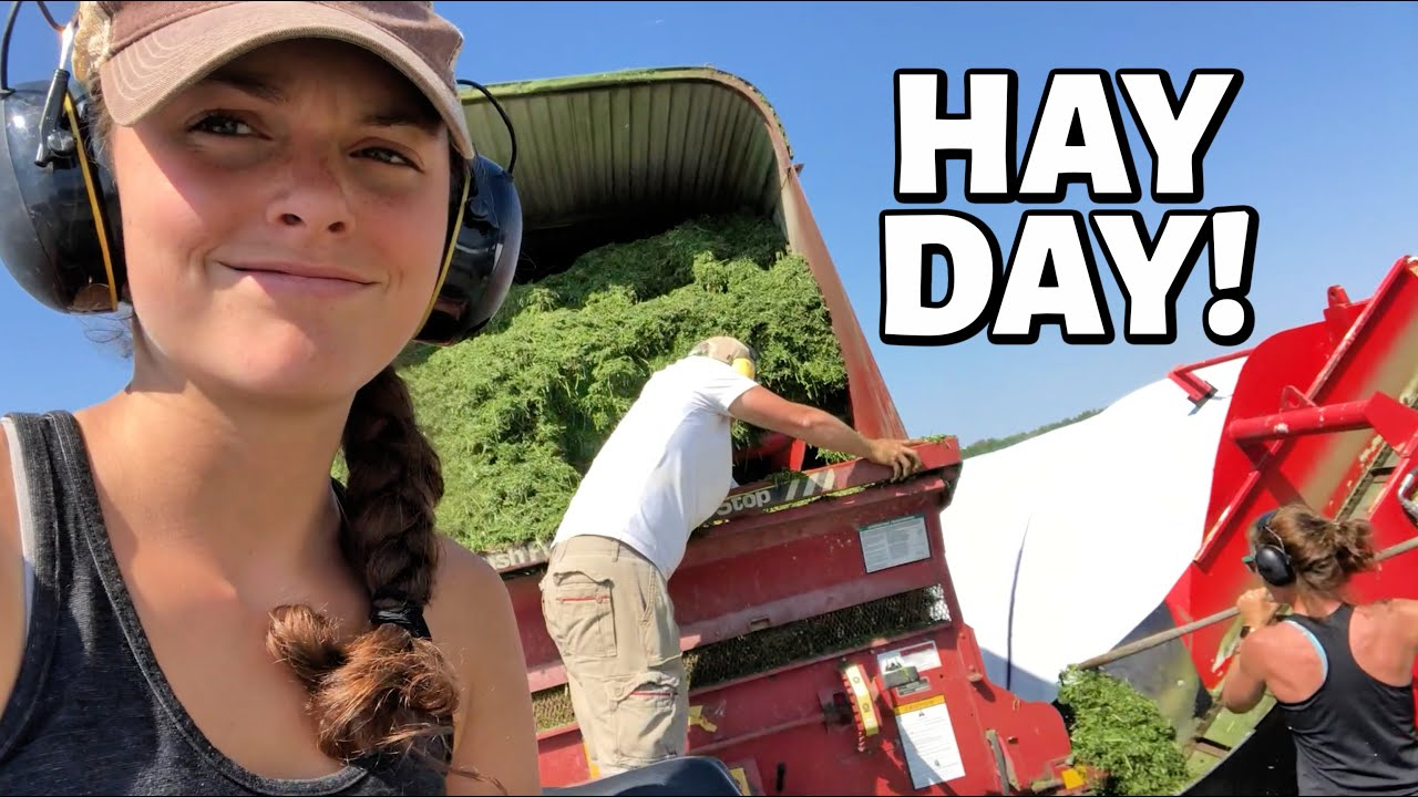 HOW IT'S MADE! | Harvesting Haylage for Sheep Feed (2nd Cut Hay 2020 - Part 3) Vlog 320