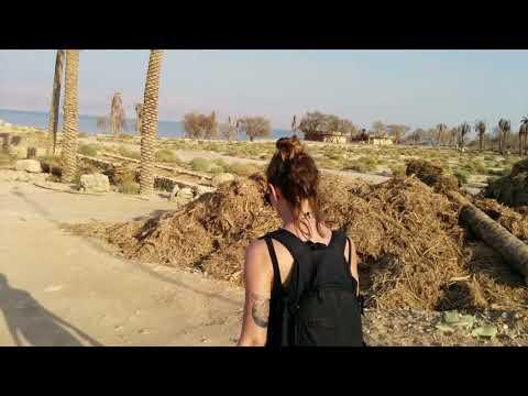 Dead Sea / Ein Gedi, Israel - Abandoned Beach