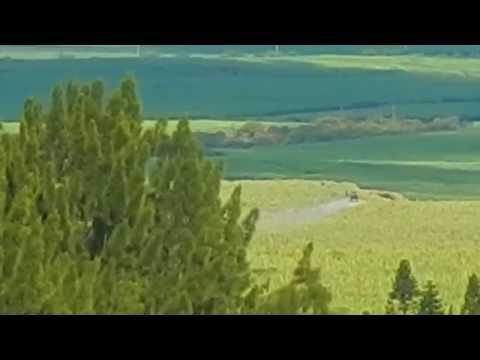 HC&S Sprays Glyphosate on Sugarcane fields on Maui