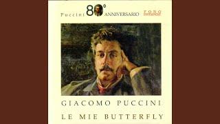 Play Madama Butterfly Vedrai Piccolo Amor ... Scuoti Quella Fronda