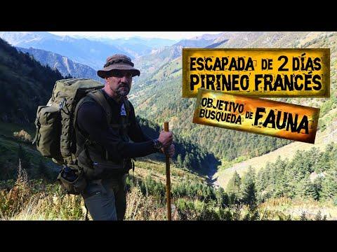 Escapada De 2 Días Al Pirineo Francés | Búsqueda Indicios De Fauna | Noche En Refugio De Montaña