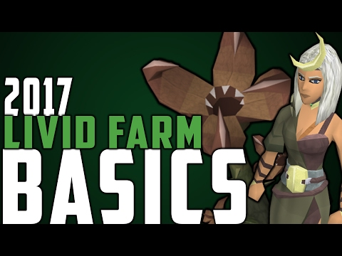 Runescape - 2017 Livid Farm Basics Guide!