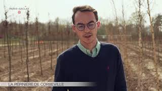Yvelines | La pépinière de Corbeville
