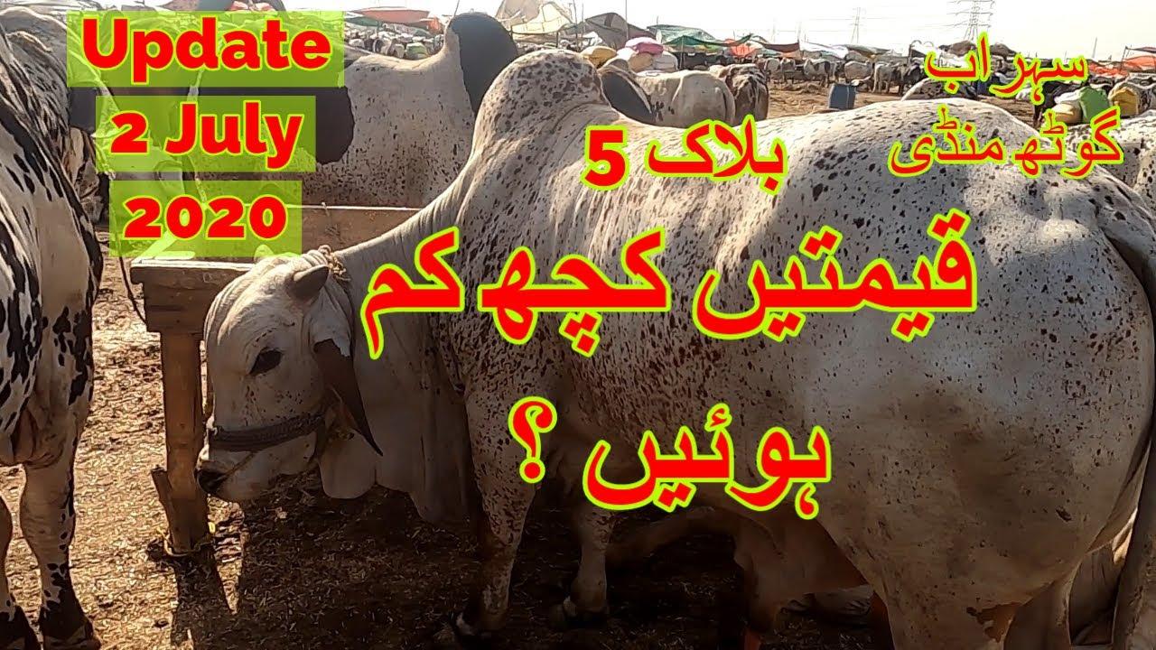 Cattle Prices - Sohrab Goth Maweshi Mandi Update 2 July 2020
