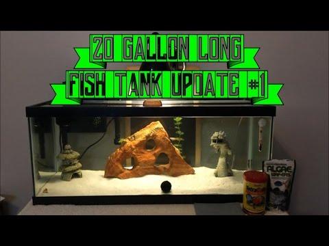 Fish Aquarium Update #1: My 20 Gallon Long Aqueon Tank Set-Up!!