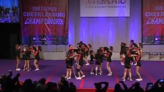 A J2l Tigers Cheerleading Caspian Tigers