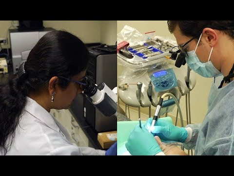 Why Students Choose UIC College of Dentistry