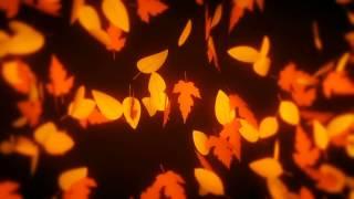 Hojas de otoño cayendo / Falling autum leaves / Animación / Freecopyright