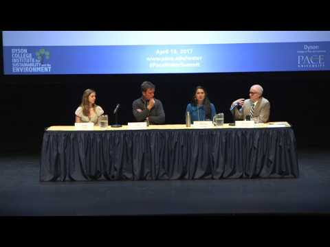 Panel: Enacting Water Resilience at the Local Scale