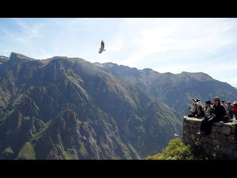 Colca Canyon / Tourist Attractions - History and Origin