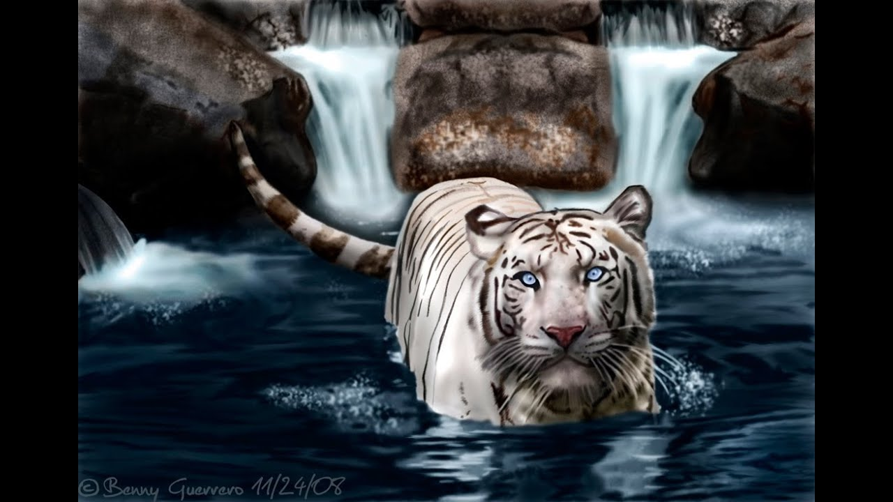 White Tiger - Speed Painting by Benji3O3 - YouTube