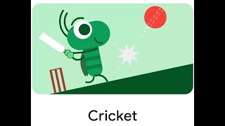 Playing cricket!