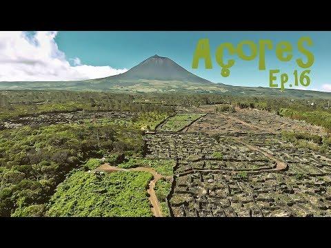 Rituais | Açores Ep.16: Ilha do Pico, São Roque, Caça à Baleia