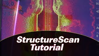 Lowrance StructureScan and SideScan [Catch Big Summer Largemouth Tutorial]