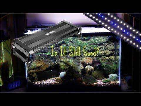 Nicrew LED Light| 8 Months Later thumbnail