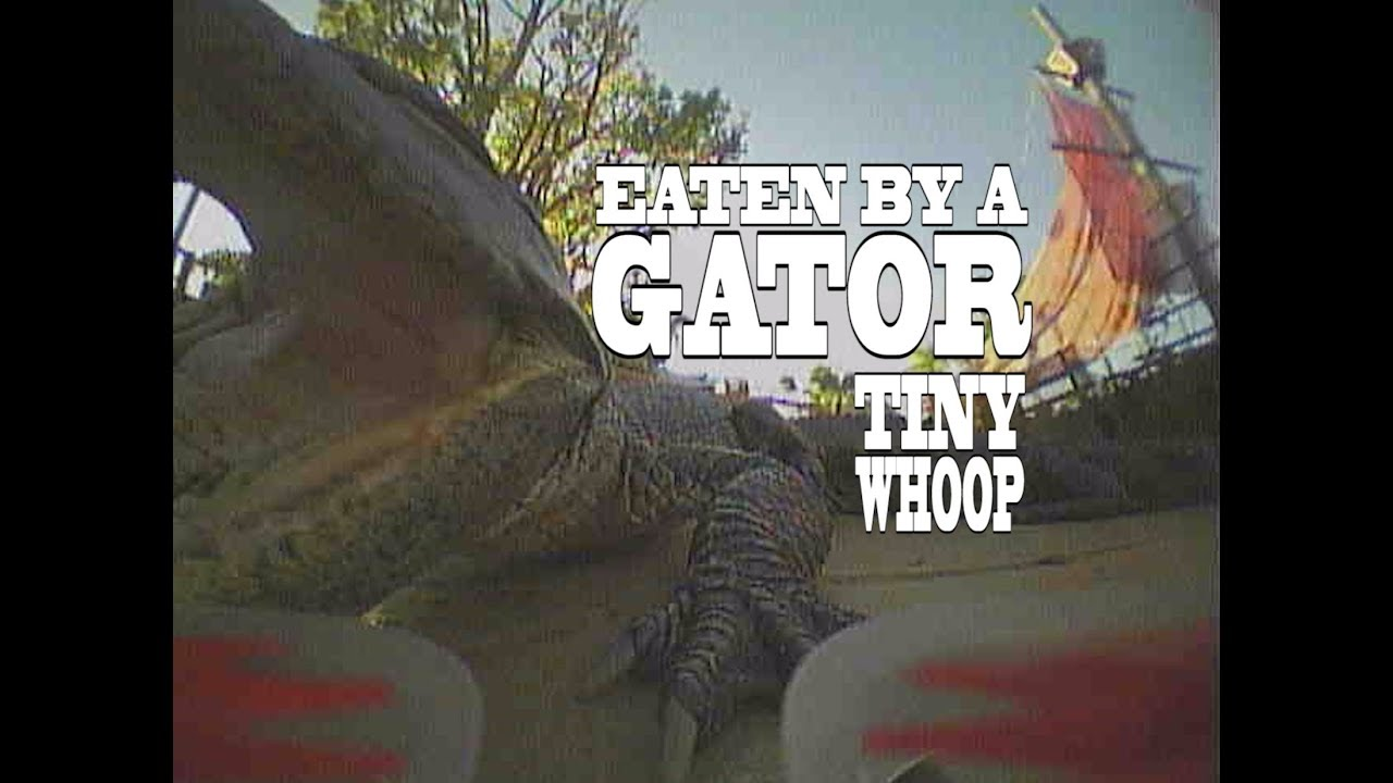 One Way Whoop – Eaten By A Gator – Tiny Whoop