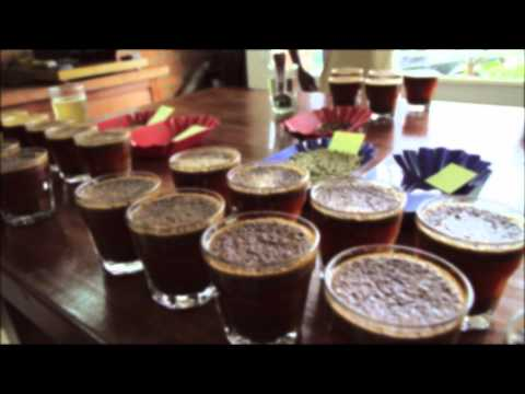 Cupping Coffee - Rwanda Trading Company