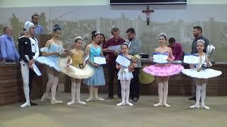 Ballet Luiz Henrique recebe Certificado de Mérito na Câmara