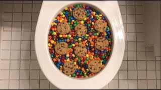 Will it Flush? - M&M's and Chips Ahoy Cookies