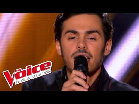 The Voice 2013   Gérôme Gallo - Human Nature (Michael Jackson)   Blind Audition