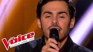 The Voice 2013 | Gérôme Gallo - Human Nature (Michael Jackson) | Blind Audition