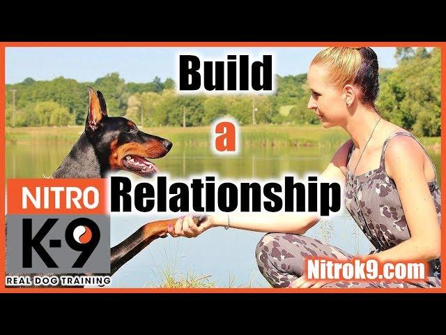 Dog trainer Steve Walter - Interview (podcast)