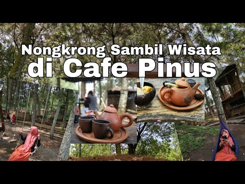 wisata-gratis-&-makan-murah-di-cafe-taman-pinus---batu