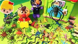 アンパンマン よくばりキューブボックスから虫が出たー!クモ ヘビ カエル トカゲ チョウチョ アヒル 退治  ❤ 昆虫 おもちゃ絵本 アニメ 動画 虫かご 何がでるかな anpanman thumbnail