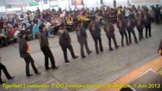 Tigerfeet Linedancer