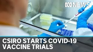 CSIRO starts trials for two potential COVID-19 vaccines | ABC News