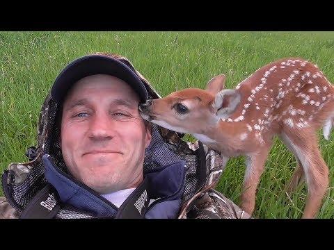 BULL LOVES HIS BRUSHиз YouTube · Длительность: 3 мин18 с