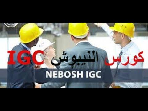 النيبوش باللغة العربية pdf