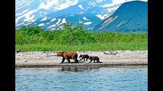 KAMČATKA   za divokou přírodou a medvědy