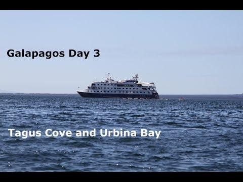 Galapagos Day 3 - Tagus Cove and Urbina Bay