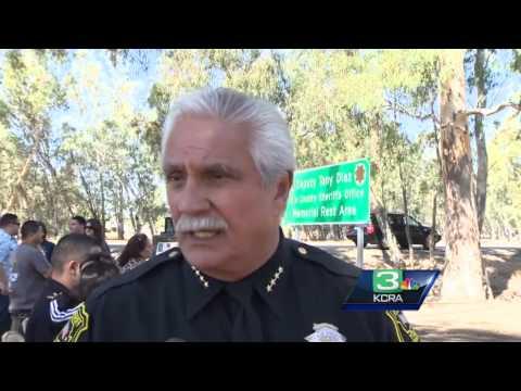 Grand jury report blasts Yolo County Sheriff