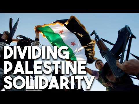 How Syria regime change trolls divided the Palestine solidarity movement