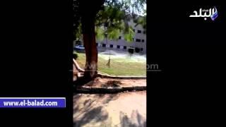 بالفيديو والصور.. جامعة القاهرة تفعل خطوط رى الحدائق في المدينة من مياه الشرب إلى «التنقيط»