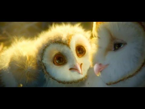 史上第一部以猫头鹰为主角的电影!一群萌宠冒险,堪称视觉盛宴!