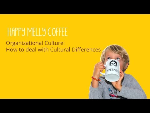 Organizational Culture:  How to deal with Cultural Differences