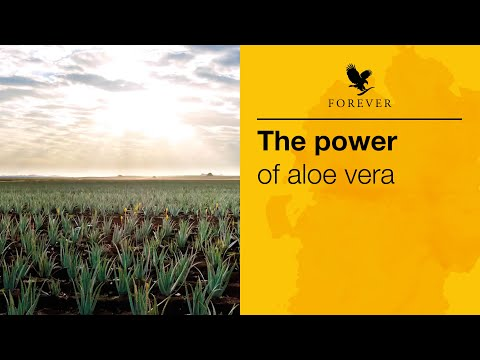 The Power of Aloe Vera | Forever Living Products #TheAloeVeraCompany