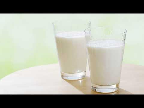 Как вырастить молочный гриб в домашних условиях с нуля?