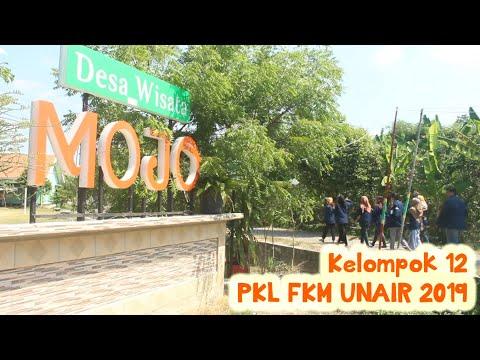 Kelompok 12 PKL FKM UNAIR 2019, Desa Mojo, Kecamatan Kalitidu, Kabupaten Bojonegoro