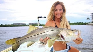 Step by Step HOW TO Catch a Snook During the Florida Mullet Run