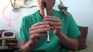 "The Hornpipe Tin Whistle ""D"" in HD"