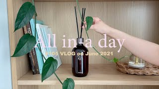 [All in-a day vlog] 헤트라스 디퓨저 &…