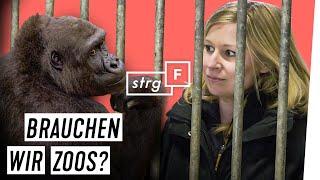 Nach Lockdown: Alle Zoos schließen? | STRG_F
