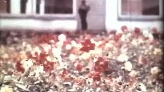 """Документальный фильм о Рижской средней школе № 72 """"Уроки здоровья"""""""