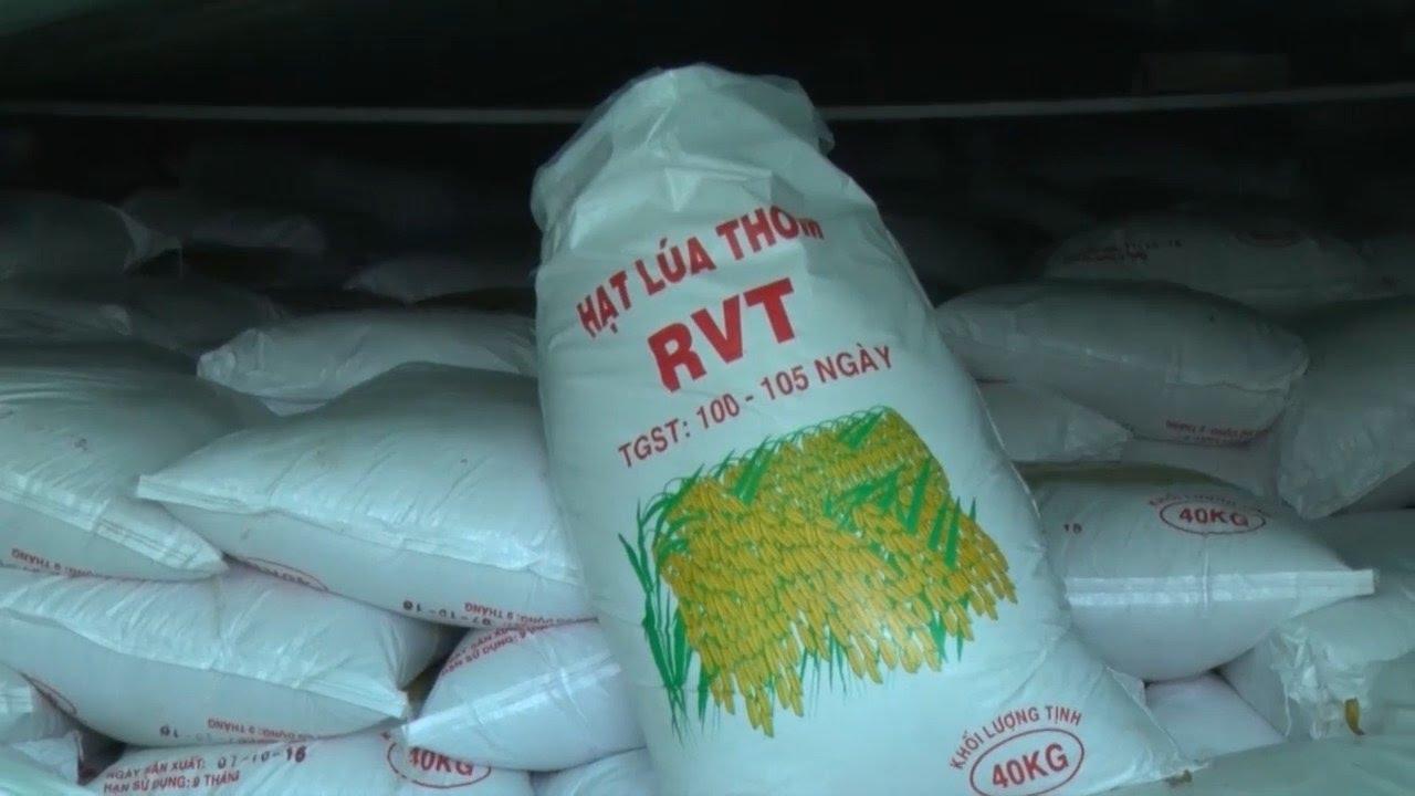 Hậu Giang tạm giữ hàng chục tấn lúa giống không rõ nguồn gốc